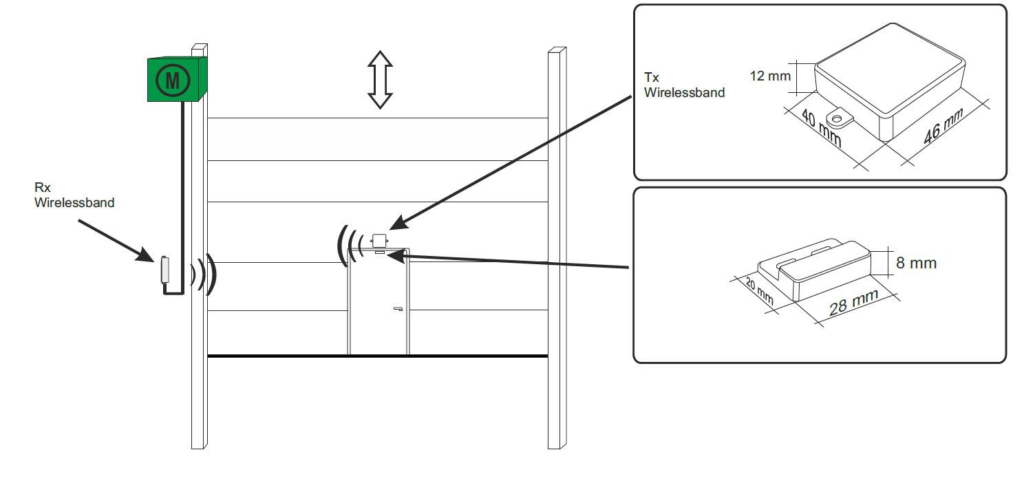 Wirelessband-Aufbau