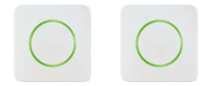 Grün / Grün
