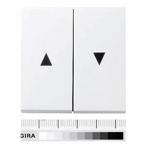 Gira System 55 Doppelwippe VK2661-UW